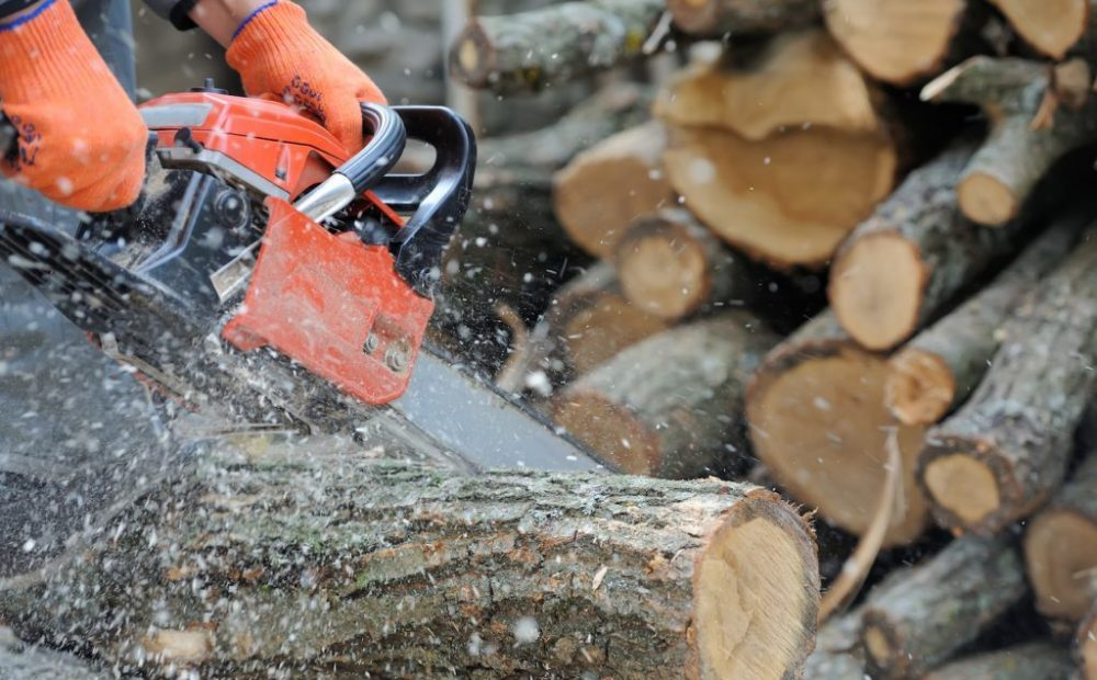 Countryside Training and Tree Management